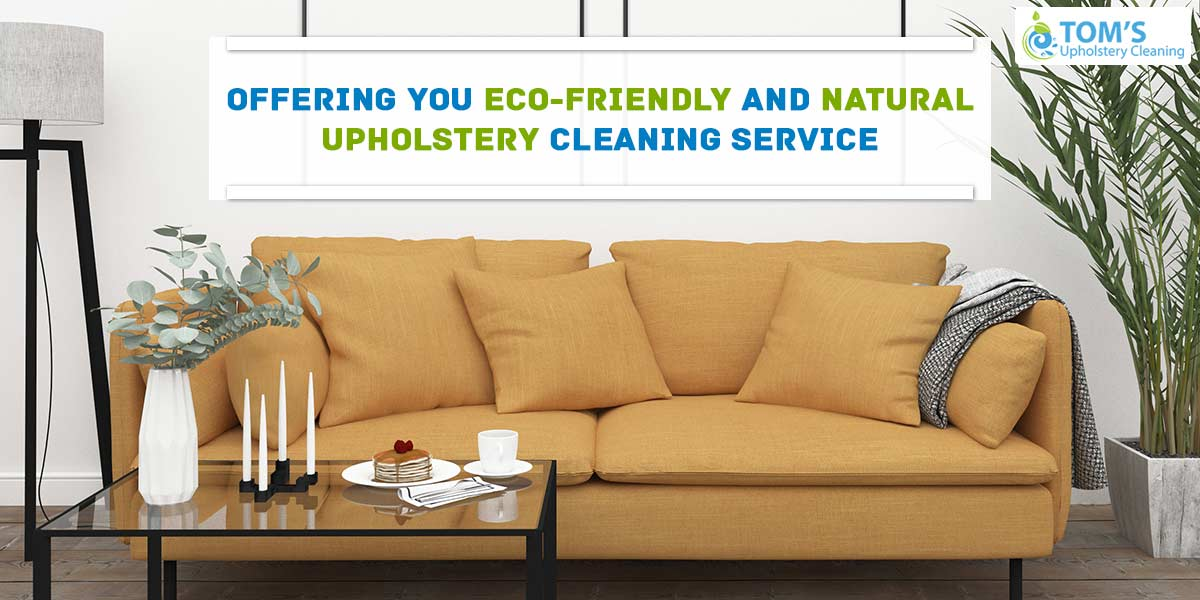 Offering You Eco-Friendly And Natural Upholstery Cleaning Service