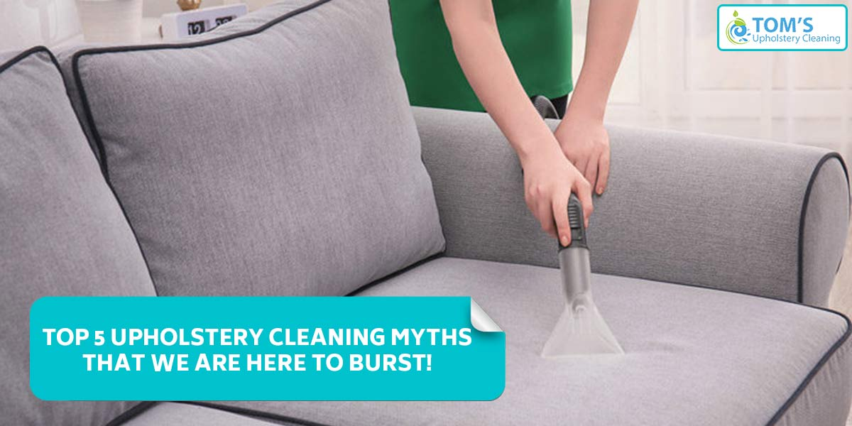 Top 5 Upholstery Cleaning Myths that we are here to burst!