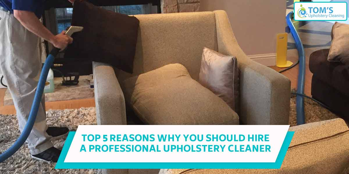 Top 5 Reasons Why You Should Hire A Professional Upholstery Cleaner