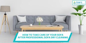 Professional Sofa Dry Cleaning