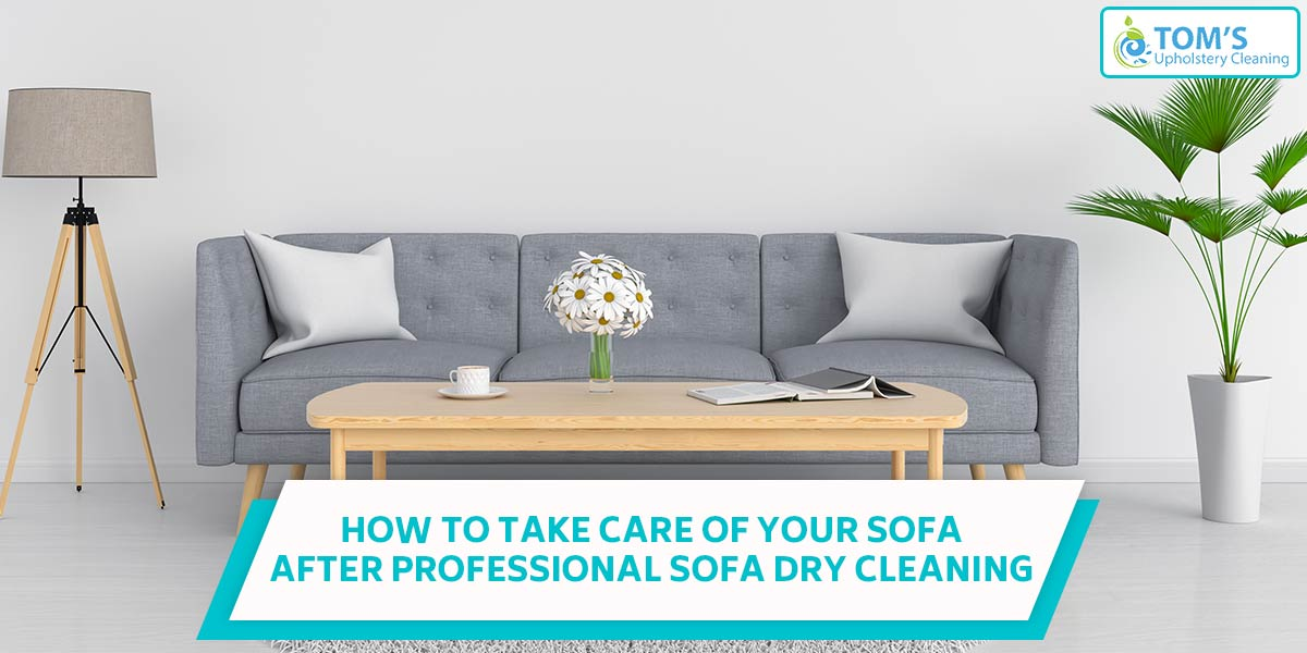 How To Take Care of Your Sofa After Professional Sofa Dry Cleaning