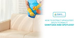 Extract Upholstery Spots