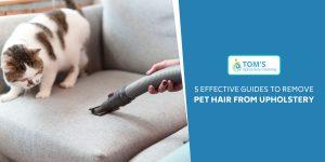 Remove Pet Hair