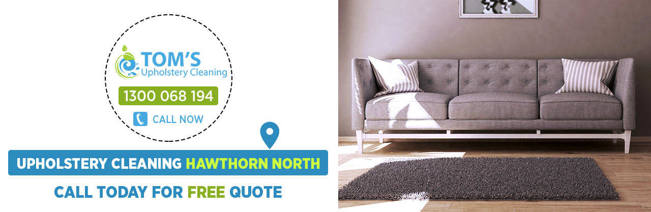 Upholstery Cleaning Hawthorn North