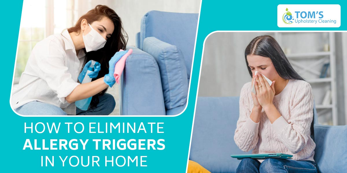 How To Eliminate Allergy Triggers in Your Home
