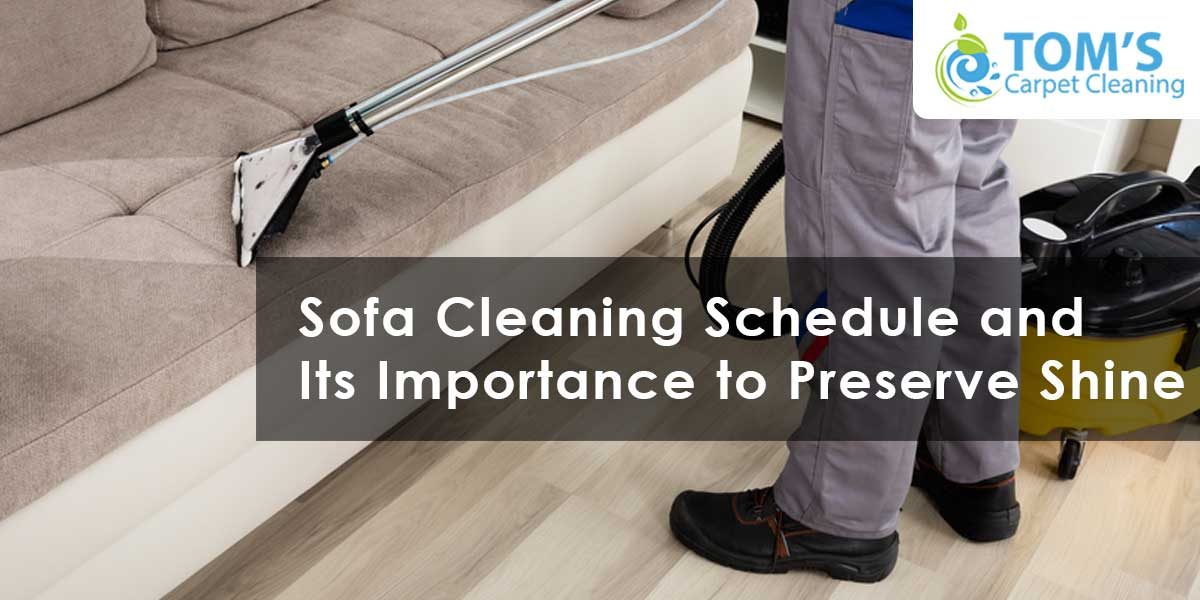 Sofa Cleaning Schedule and Its Importance to Preserve Shine